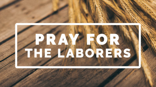 Pray for the Laborers
